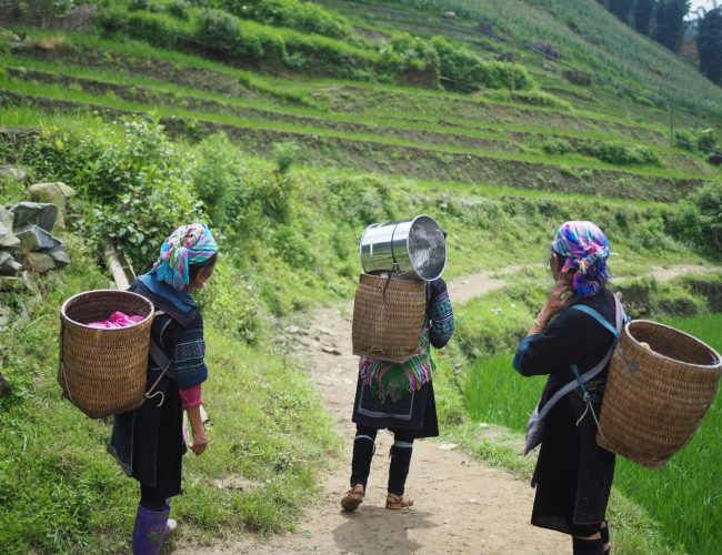 Traditional women labourers in Vietna,